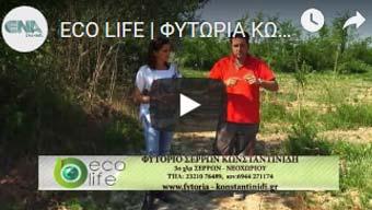eco life konstantinidis